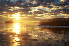 Winter landscape with river, reeds and sunset sky. Stock Photo