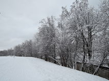 Winter landscape with river Stock Photos