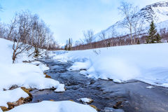 Winter landscape with river, trees and mountain Royalty Free Stock Photos