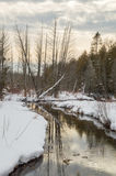 Winter landscape of river, trees, snow and reflections Stock Image