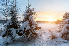 Winter landscape river and trees under the snow. Nature. Stock Photography