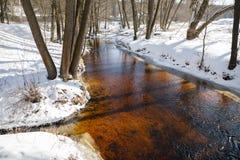Winter landscape river Stock Images