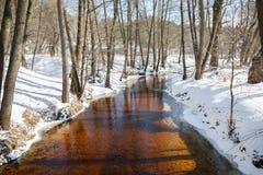 Winter landscape river Stock Photography