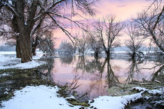 Winter landscape river Zagyva Royalty Free Stock Images