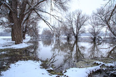 Winter landscape river Zagyva Royalty Free Stock Photos