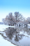 Winter landscape river Zagyva Royalty Free Stock Image