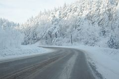 Winter landscape with the road the forest royalty free stock photos