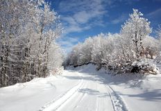 Winter landscape. Road in the forest. Winter landscape with road in the forest on blue sky Royalty Free Stock Photography