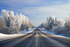 Winter landscape with the road the forest Stock Photography