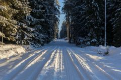 Winter landscape, road in forest in a winter. Royalty Free Stock Photo
