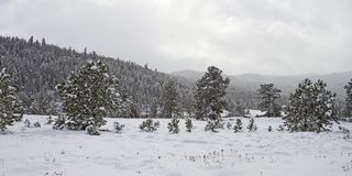 Winter landscape in the Rocky Mountains Stock Image