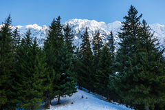 Winter landscape with rocky mountains Royalty Free Stock Photo