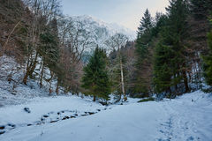 Winter landscape with rocky mountains Stock Image