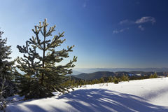 Winter landscape in Rodopi mountain_6. Beautiful winter landscape in a mountain Royalty Free Stock Images