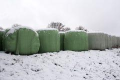 Winter Landscape. Rolls with fodder in winter. Winter Landscape. Rolls with fodder in winter stock photo