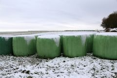 Winter Landscape. Rolls with fodder in winter. Winter Landscape. Rolls with fodder in winter stock photography