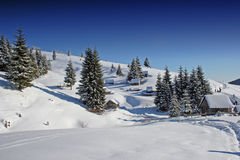 Winter Landscape in Romania. A winter landscape in Romania, with trees and snow Royalty Free Stock Image