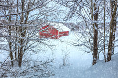 Winter Landscape with rural house,  snow and trees Stock Photo