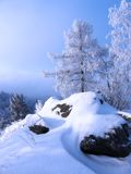 Winter landscape in Russia. Stock Images