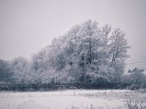 Winter landscape. In Russia Royalty Free Stock Photos