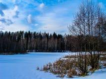 Winter landscape in Russia (Kaluga region). Stock Images