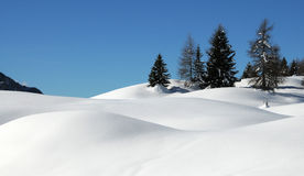 Winter Landscape at San Pellegrino pass, Dolomites, Italy. Stock Photography