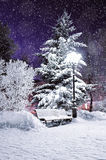 Winter landscape scene of snow covered bench in the night park among frosty winter trees and street shining lanterns. Winter night landscape of city park under Royalty Free Stock Photography