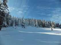 Winter landscape. A winter scene with untouch snow and blue sky Stock Photography
