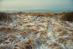 Winter landscape and sea Stock Images