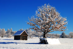 Winter landscape. With sheperds hut, Romania Royalty Free Stock Photography