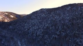 The winter landscape in Siberia stock footage