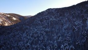 The winter landscape in Siberia stock video