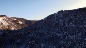 Winter landscape in Siberia stock footage