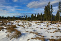 Winter landscape in the ski resort of Špičák,  Železná Ruda, Czech Republic. A Picture of the Winter landscape in the ski resort of Špičák, Žezná Ruda Stock Photo
