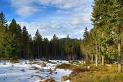 Winter landscape in the ski resort of Špičák,  Železná Ruda, Czech Republic. A Picture of the Winter landscape in the ski resort of Špičák, Žezná Ruda Royalty Free Stock Image