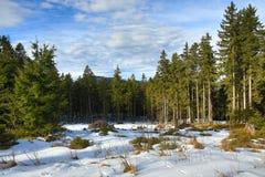 Winter landscape in the ski resort of Špičák,  Železná Ruda, Czech Republic. A Picture of the Winter landscape in the ski resort of Špičák, Žezná Ruda Stock Image