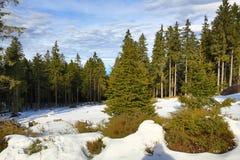 Winter landscape in the ski resort of Špičák,  Železná Ruda, Czech Republic. A Picture of the Winter landscape in the ski resort of Špičák, Žezná Ruda Royalty Free Stock Photography