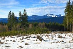 Winter landscape in the ski resort of Špičák,  Železná Ruda, Czech Republic. A Picture of the Winter landscape in the ski resort of Špičák, Žezná Ruda Royalty Free Stock Photos