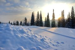 Winter landscape with a ski road between the snowdrifts and the setting sun. SONY Winter landscape with a ski road between the snowdrifts and the setting sun Stock Image
