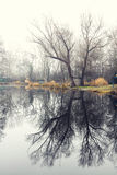 Winter landscape with a small lake, nature Stock Photography