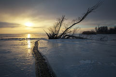 Winter landscape with snag on the frozen lake Stock Photo