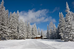Winter landscape after snow. The winter landscape after snow Royalty Free Stock Photos