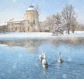 Winter landscape with snow, castle and swans Royalty Free Stock Photography