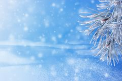 Winter landscape with snow. Christmas background with fir branch. And Christmas ball.Merry Christmas and happy New Year greeting card with copy-space stock images