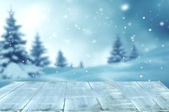 Winter landscape with snow and christmas trees Stock Image