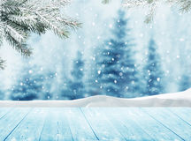 .Winter landscape with snow and christmas trees Royalty Free Stock Photo