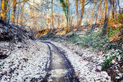 Winter landscape with snow covered country road Stock Images