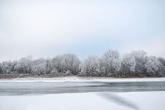 Winter landscape of snow-covered fields, trees and river Royalty Free Stock Photos