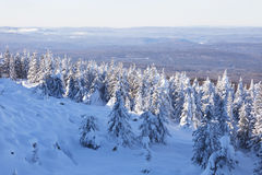 Winter landscape. Snow covered forest. Mountain range Zuratkul Royalty Free Stock Photography