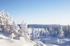 Winter landscape. Snow covered forest. Mountain range Zuratkul Royalty Free Stock Photos